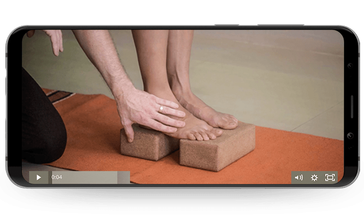 Online Yoga Training Anatomy on Phone