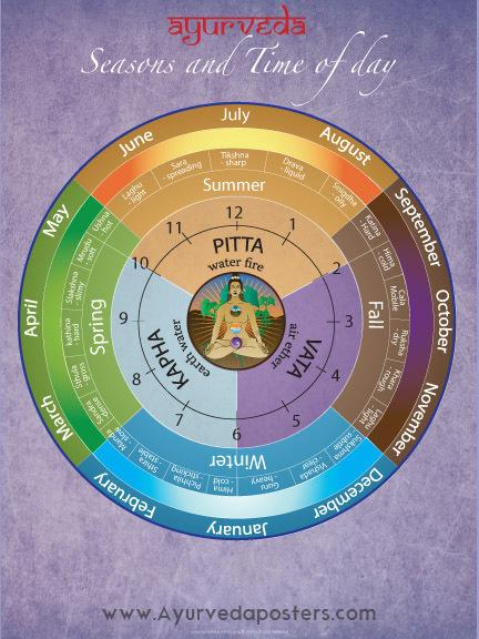 Ayurveda dosha clock